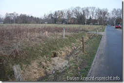 Östliche Grundstücksgrenze mit Mulde und Einfahrt