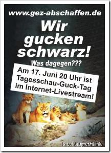 Tagesschau-Guck-Tag: 17. Juni 2010