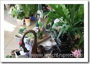 Blumen-Station & Ambiente: Pflanzen und Töpfe